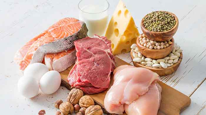 Protein foods to become fat