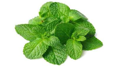 mint_leaves.jpg